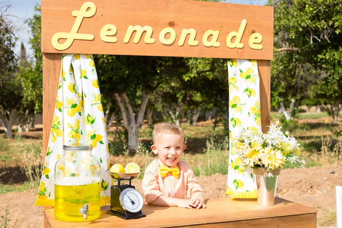 Lemonade Stand from a Lemonade Stand Birthday Party on Kara's Party Ideas | KarasPartyIdeas.com (14)