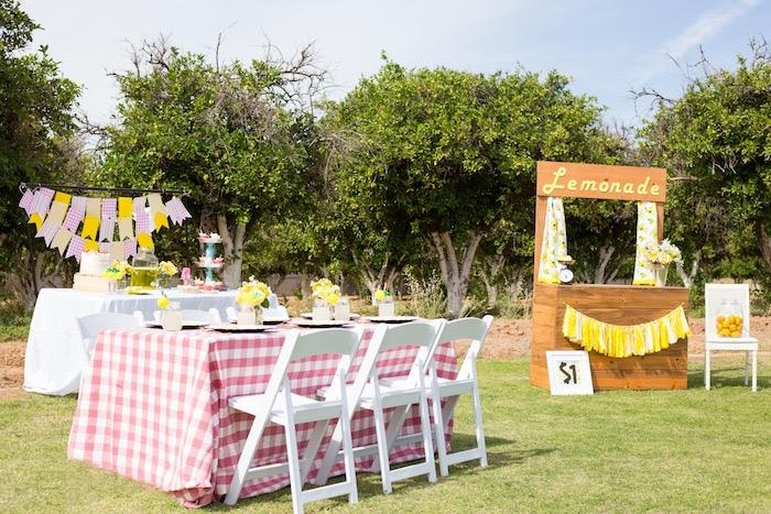 Lemonade Stand Birthday Party on Kara's Party Ideas | KarasPartyIdeas.com (7)