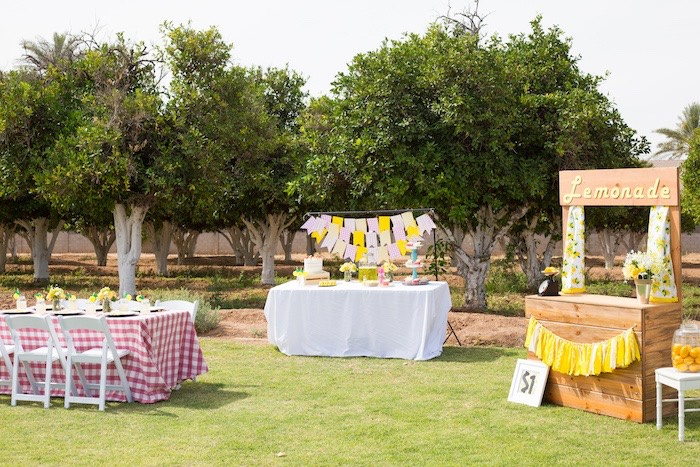 Lemonade Stand Birthday Party on Kara's Party Ideas | KarasPartyIdeas.com (6)