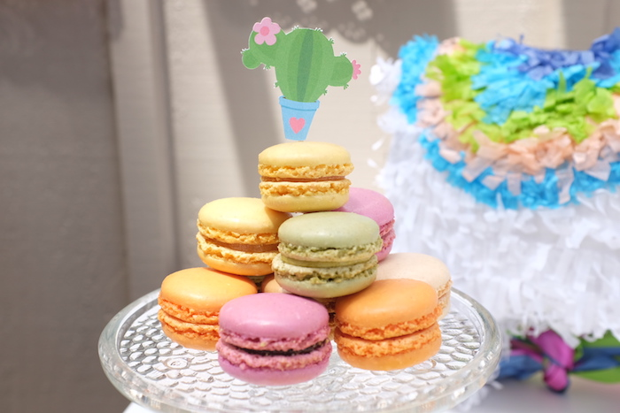 Macarons from a Llama & Cactus Birthday Party on Kara's Party Ideas | KarasPartyIdeas.com (17)