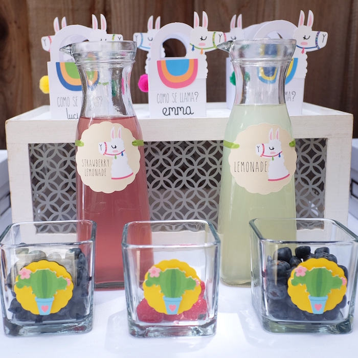 Lemonade with Fruit Mixers from a Llama & Cactus Birthday Party on Kara's Party Ideas | KarasPartyIdeas.com (10)