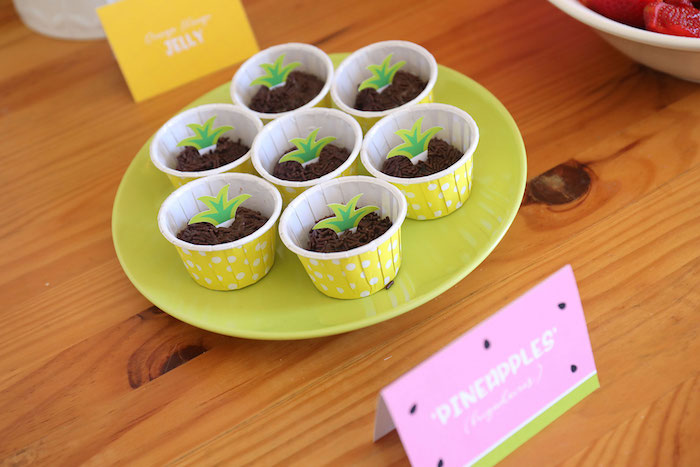 Pineapple Dessert Cups from a Two-tti Frutti Birthday Party on Kara's Party Ideas | KarasPartyIdeas.com (13)