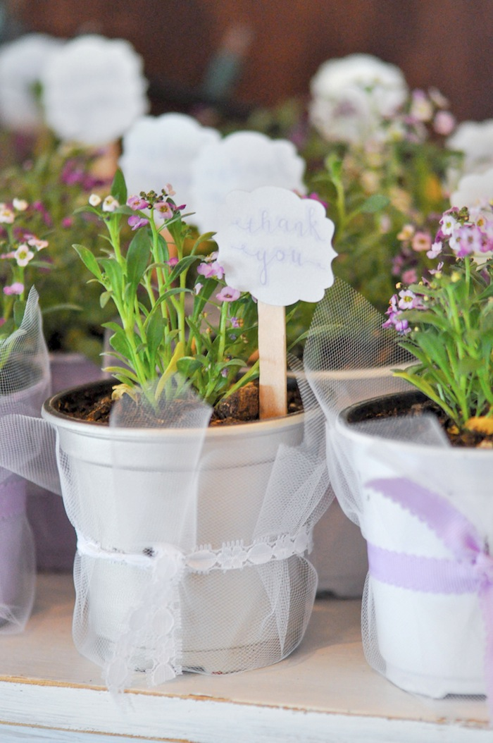 Garden Plant Party Favors at a Vintage Lavender and Silver Baby Shower for Kara's Party Ideas | Kara Allen-5