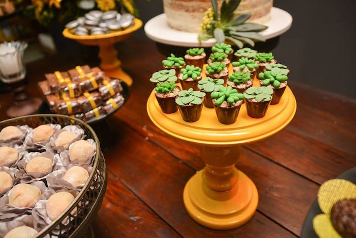 """Succulent Pudding Cups from O Menino e o Poço """"The Boy and the Well"""" 60th Birthday Party on Kara's Party Ideas 