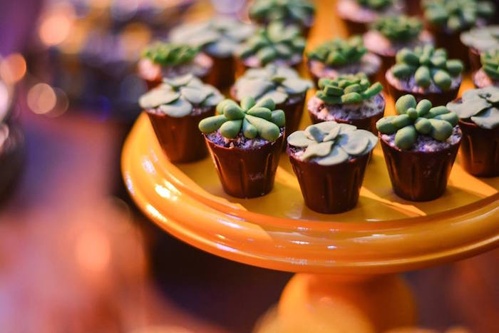 """Succulent Dessert + Pudding Cups from O Menino e o Poço """"The Boy and the Well"""" 60th Birthday Party on Kara's Party Ideas 