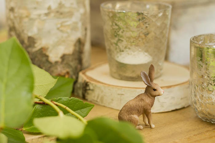 Woodland Bunny from a Vintage Woodland Baby Shower on Kara's Party Ideas | KarasPartyIdeas.com (11)