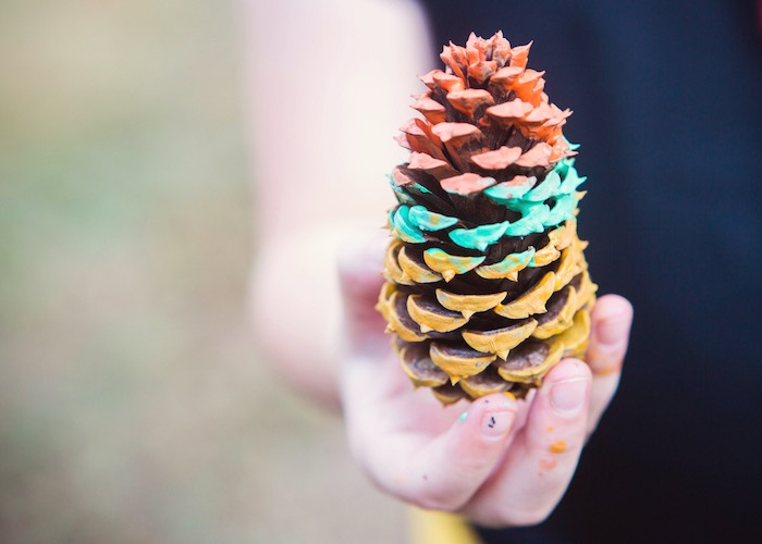 Painted Pinecone from a Boho Tribal Wild One 1st Birthday Party on Kara's Party Ideas | KarasPartyIdeas.com (10)
