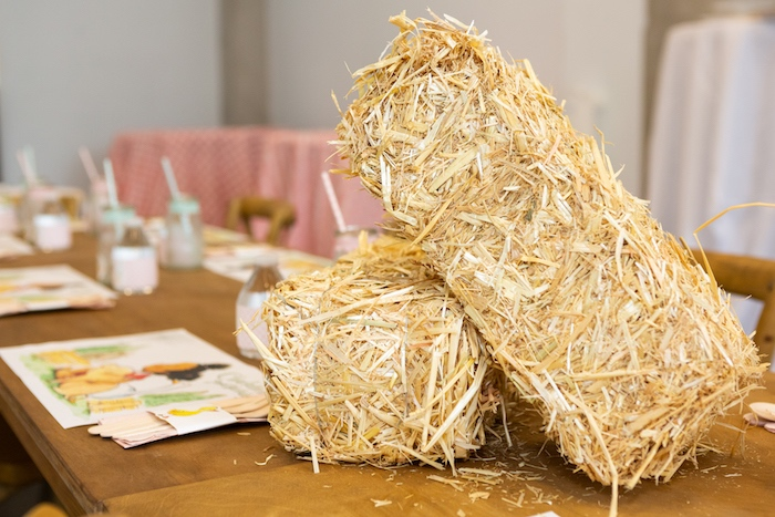 Mini Straw Bail Table Centerpieces from a Charlotte's Web Birthday Party on Kara's Party Ideas | KarasPartyIdeas.com (33)