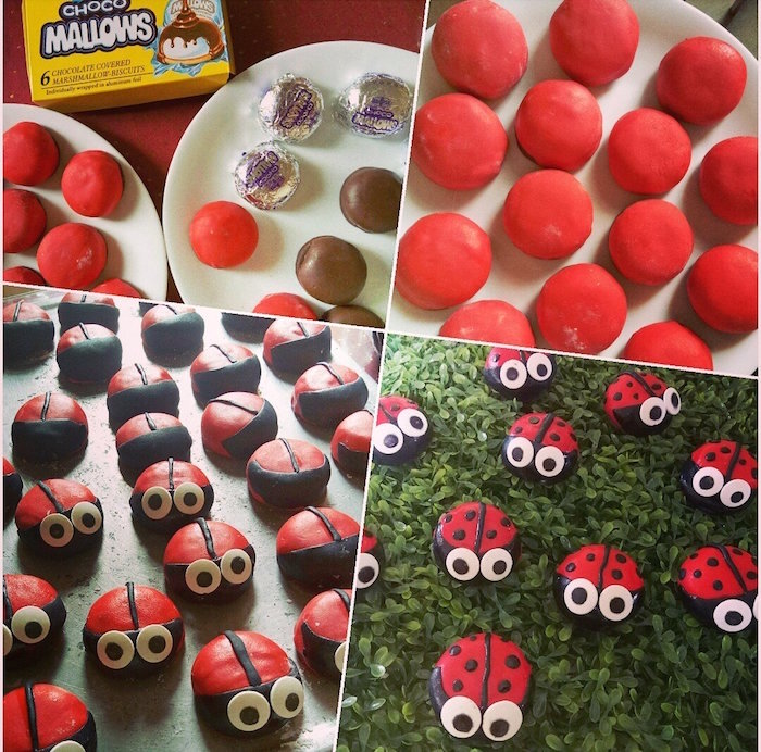 Kara's Party Ideas Miraculous Ladybug Birthday Party