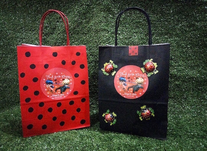 Miraculous Ladybug Gift/Favor Bags from a Miraculous Ladybug Birthday Party on Kara's Party Ideas | KarasPartyIdeas.com (18)