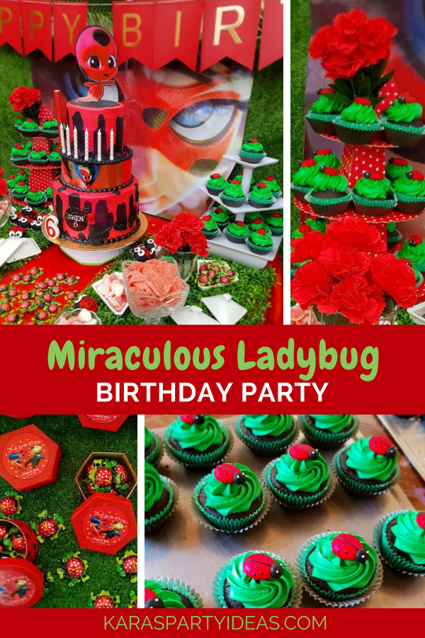 Karas Party Ideas Miraculous Ladybug Birthday Party
