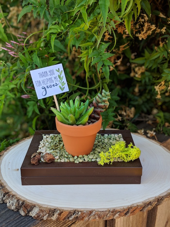 Succulent Centerpiece from a Rustic Garden Birthday Party on Kara's Party Ideas | KarasPartyIdeas.com (27)