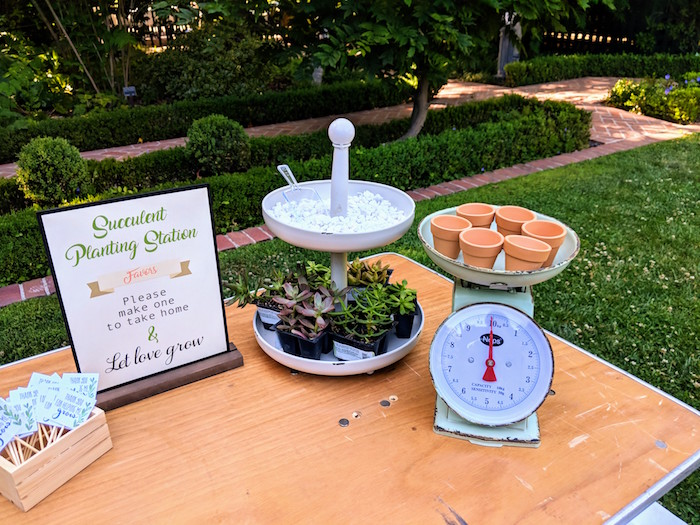Succulent Planting Station from a Rustic Garden Birthday Party on Kara's Party Ideas | KarasPartyIdeas.com (6)