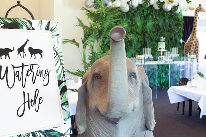 Elephant Watering Hole + Signage from a Safari Wild One Birthday Party on Kara's Party Ideas | KarasPartyIdeas.com (25)