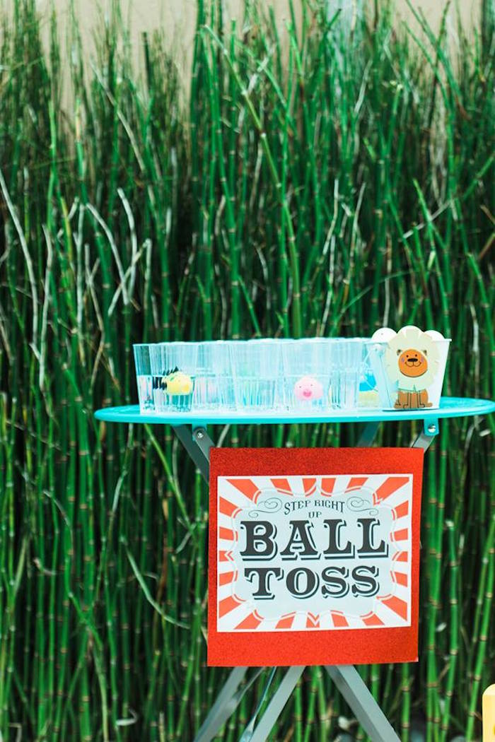 "Ball Toss Game from ""The Greatest Showman"" Circus Birthday Party on Kara's Party Ideas 