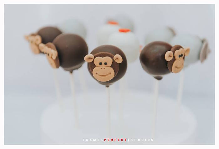Monkey Cake Pops from a Carnival Animal Birthday Party on Kara's Party Ideas | KarasPartyIdeas.com (28)