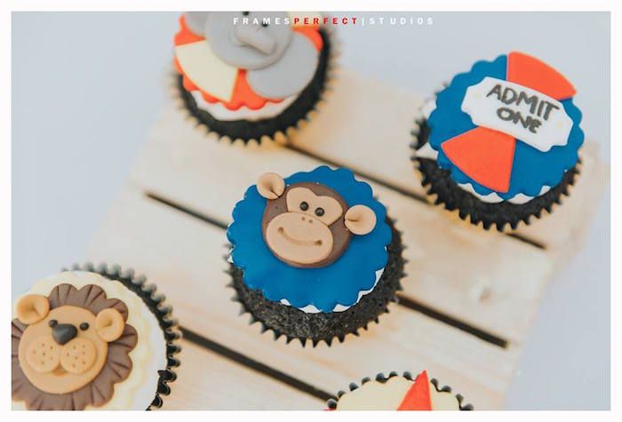 Circus/Carnival Cupcakes from a Carnival Animal Birthday Party on Kara's Party Ideas | KarasPartyIdeas.com (20)