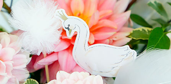 Swan Lake Birthday Soiree on Kara's Party Ideas | KarasPartyIdeas.com (1)