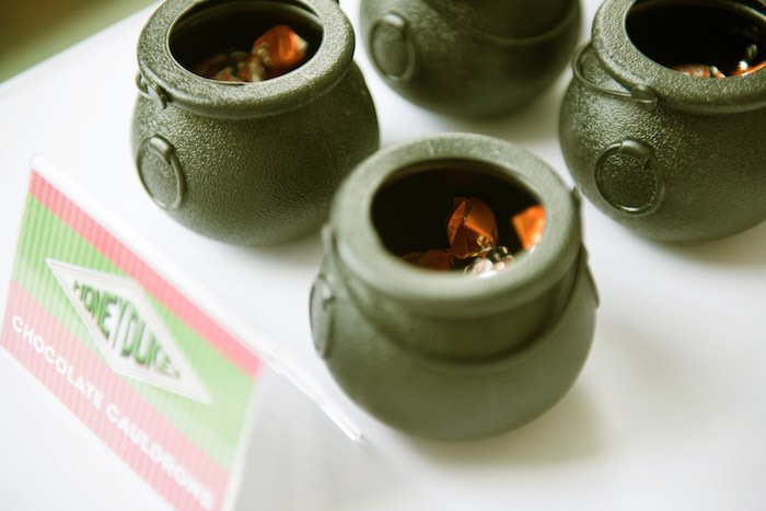 Cauldron Candy Cups from a Harry Potter Birthday Party on Kara's Party Ideas | KarasPartyIdeas.com (23)
