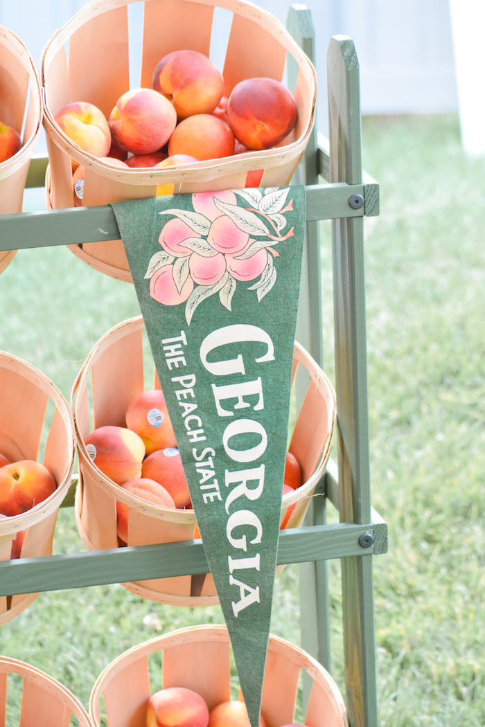 Georgia Peach Pennant Banner at a Sweet as a Peach Peaches and Cream 1st Birthday Party by Kara's Party Ideas