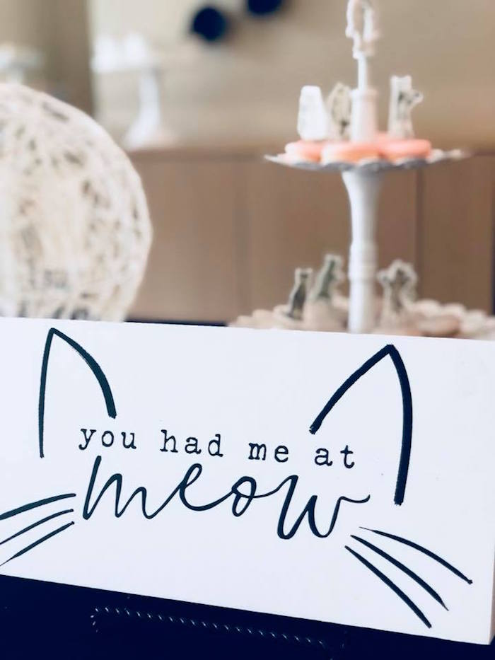 You had me at meow print + sign from A Purrfect Pawty Kitty Cat Birthday Party on Kara's Party Ideas | KarasPartyIdeas.com (17)