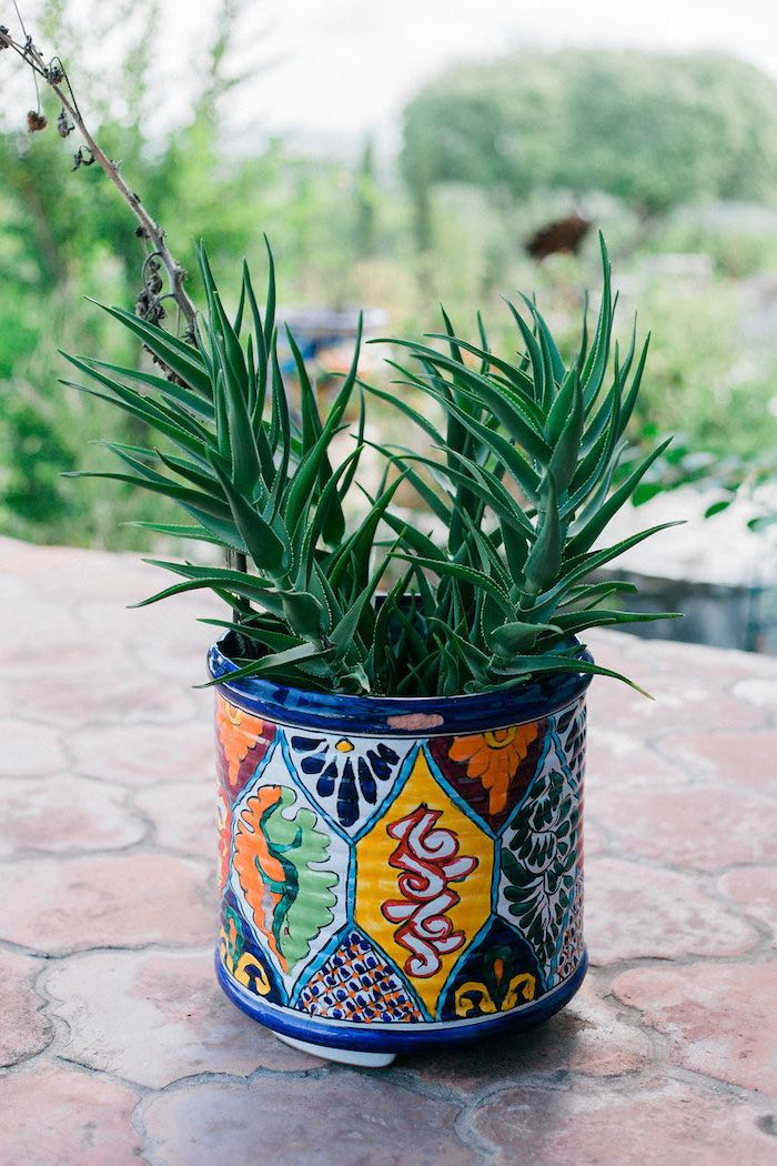 Mexican Planter from an Alebrije Mexican Folk Art Inspired Baby Shower on Kara's Party Ideas | KarasPartyIdeas.com (44)