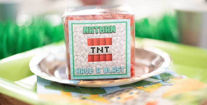 Epic Minecraft Birthday Party on Kara's Party Ideas | KarasPartyIdeas.com (3)