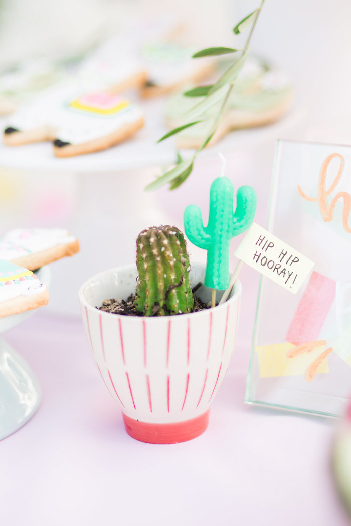 Hip Hip Hooray Cactus from a Llama First Birthday Party on Kara's Party Ideas | KarasPartyIdeas.com (35)