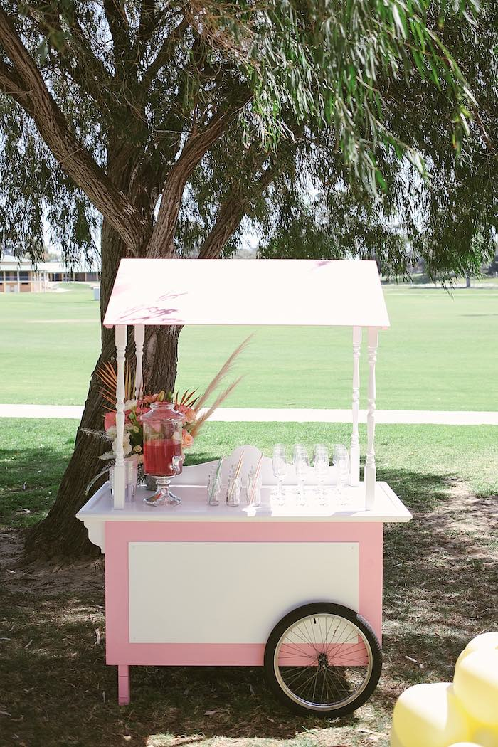 Pink & White Beverage Cart from a Pastel Sweet 2nd Birthday Party on Kara's Party Ideas | KarasPartyIdeas.com (13)