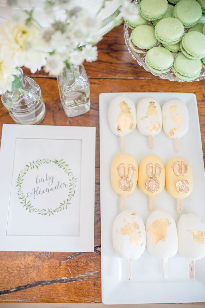 "Cake Popsicles from an ""Oh Baby"" Garden Oasis Baby Shower on Kara's Party Ideas 