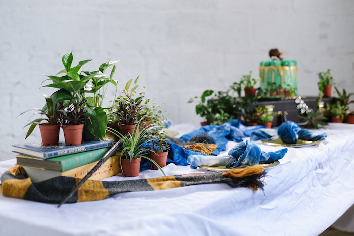 Plant-adorned Cake Table from a Fantastic Beasts Inspired 1st Birthday Cake Smash Fantastic Beasts Inspired 1st Birthday Cake Smash Fantastic Beasts Inspired 1st Birthday Cake Smash on Kara's Party Ideas | KarasPartyIdeas.com (19)