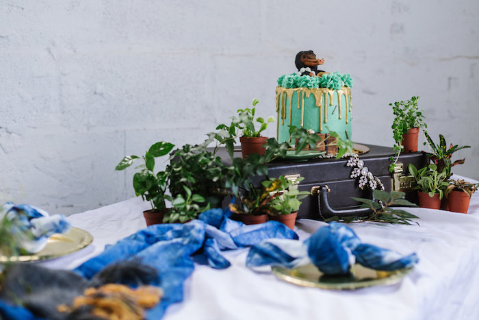 Fantastic Beasts-inspired Cake Table from a Fantastic Beasts Inspired 1st Birthday Cake Smash Fantastic Beasts Inspired 1st Birthday Cake Smash Fantastic Beasts Inspired 1st Birthday Cake Smash on Kara's Party Ideas | KarasPartyIdeas.com (18)