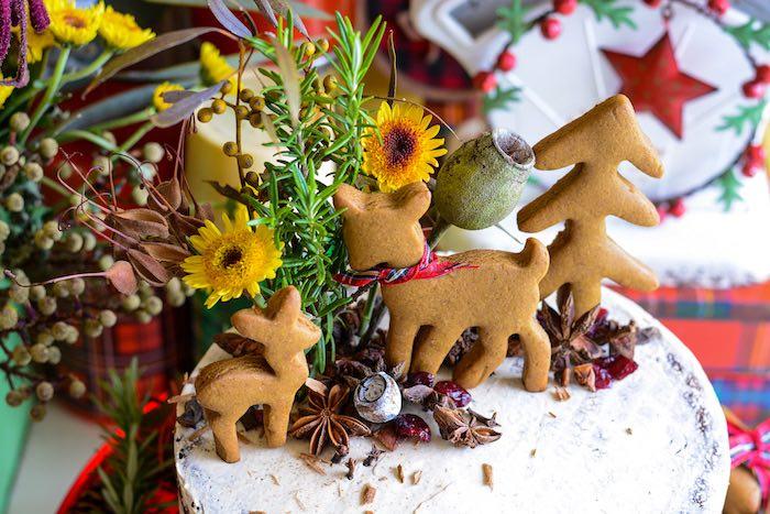 Woodland Cake Top from a Rustic Australian Christmas Dessert Table on Kara's Party Ideas | KarasPartyIdeas.com (33)