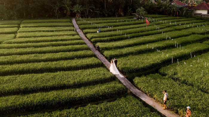 Rice Fields from a Bali Destination Island Wedding on Kara's Party Ideas | KarasPartyIdeas.com (14)