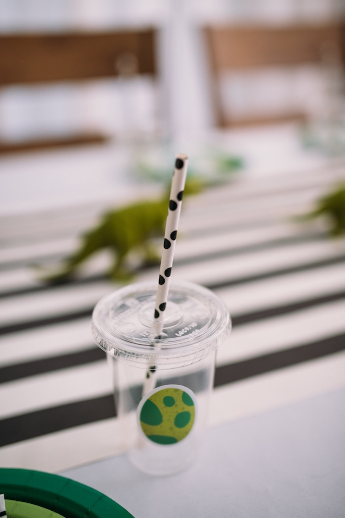 Dinosaur Themed Drink Cup form a Modern Dinosaur Birthday Party on Kara's Party Ideas | KarasPartyIdeas.com (22)