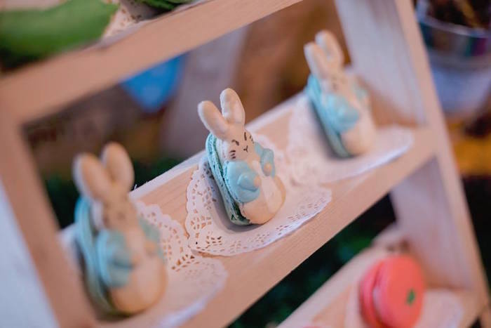 Peter Rabbit Macarons from a Peter Rabbit Birthday Party on Kara's Party Ideas | KarasPartyIdeas.com (10)