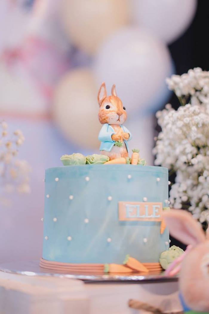 Peter Rabbit Cake from a Peter Rabbit Birthday Party on Kara's Party Ideas | KarasPartyIdeas.com (5)