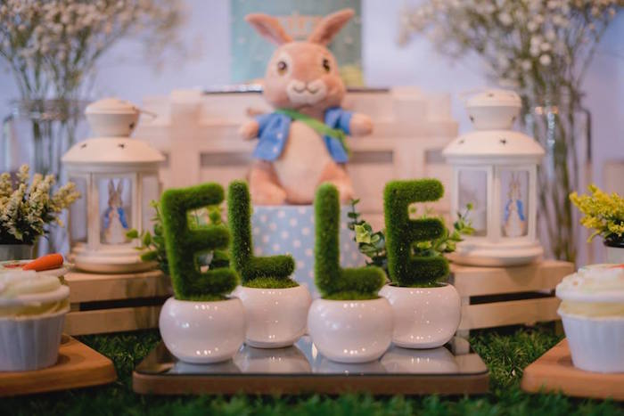 Moss Letter Planters from a Peter Rabbit Birthday Party on Kara's Party Ideas | KarasPartyIdeas.com (16)