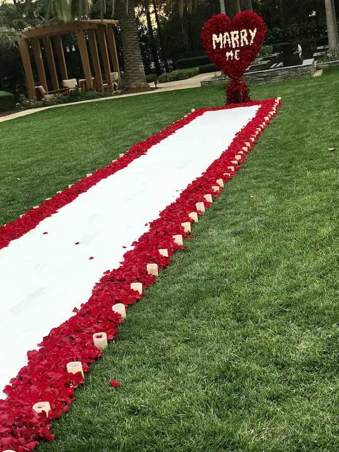 Red Rose Aisle + Walkway from a Romantic Marriage Proposal + Surprise Engagement Party on Kara's Party Ideas | KarasPartyIdeas.com (8)