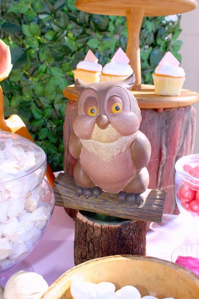Friend Owl Prop from a Bambi Inspired Woodland Birthday Party on Kara's Party Ideas | KarasPartyIdeas.com (18)
