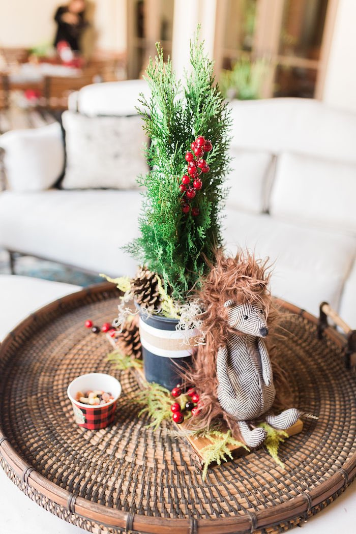 Hedgehog + Porcupine Table Centerpiece from a Rustic Camping Birthday Party on Kara's Party Ideas | KarasPartyIdeas.com (27)