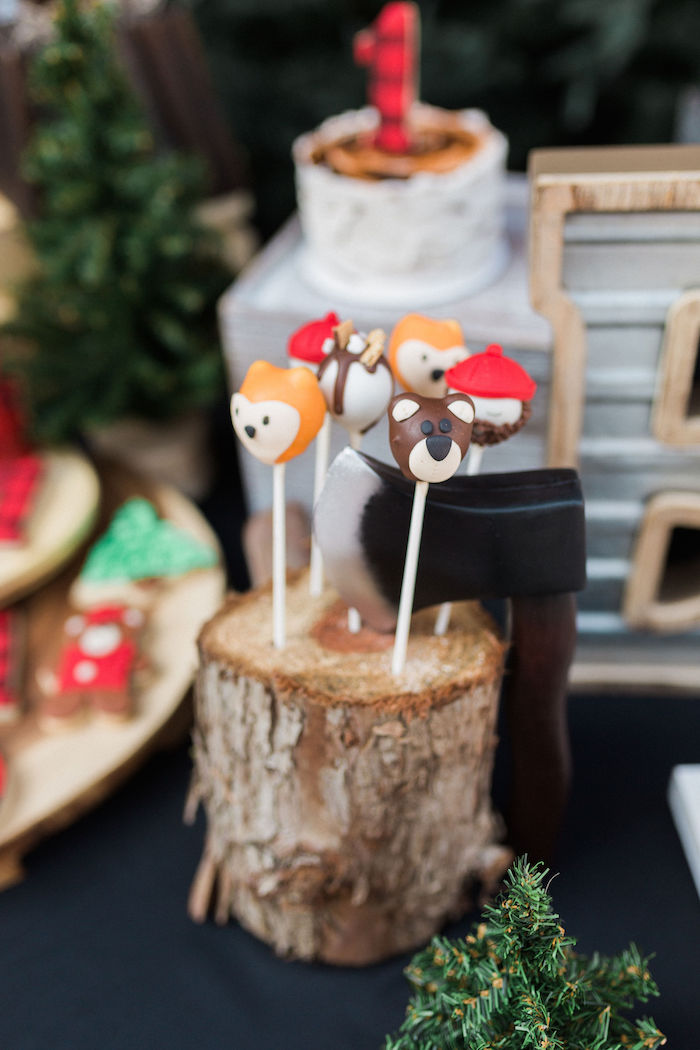 Camping Cake Pops from a Rustic Camping Birthday Party on Kara's Party Ideas | KarasPartyIdeas.com (41)