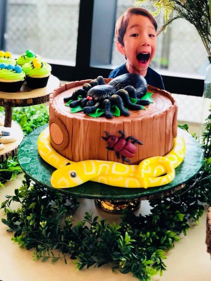 Bug Themed Birthday Cake from a Birthday Bug Bash on Kara's Party Ideas | KarasPartyIdeas.com (22)