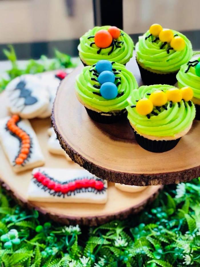 Bug Cupcakes from a Birthday Bug Bash on Kara's Party Ideas | KarasPartyIdeas.com (8)
