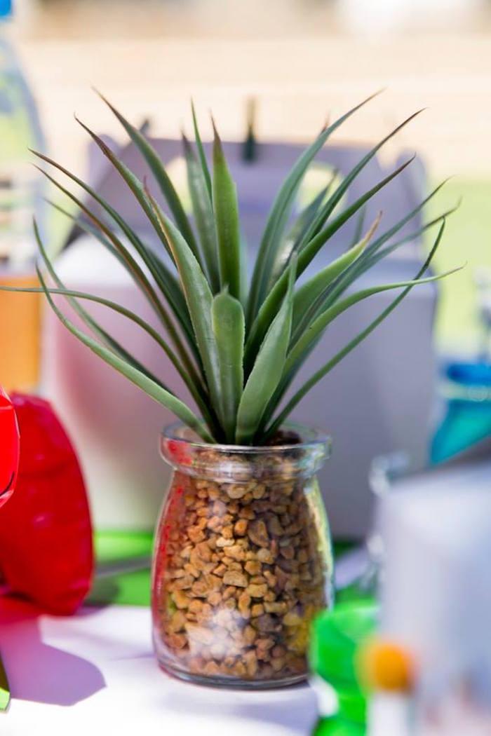 Tropical Plant from a Dinosaur Birthday Party on Kara's Party Ideas | KarasPartyIdeas.com (13)