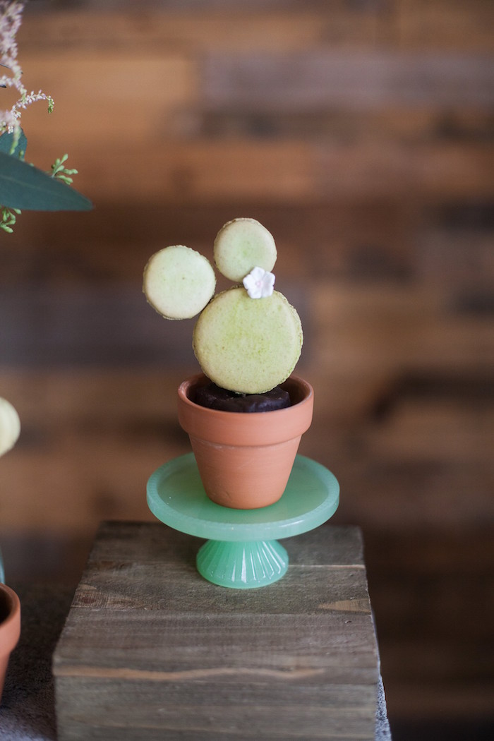 Macaron Cactus Plant from a Cactus Macaron Plant from a Cactus Themed Dol 1st Birthday Party on Kara's Party Ideas | KarasPartyIdeas.com (20)