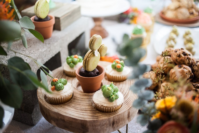 Cactus Cupcakes + Macarons from a Cactus Themed Dol 1st Birthday Party on Kara's Party Ideas | KarasPartyIdeas.com (19)
