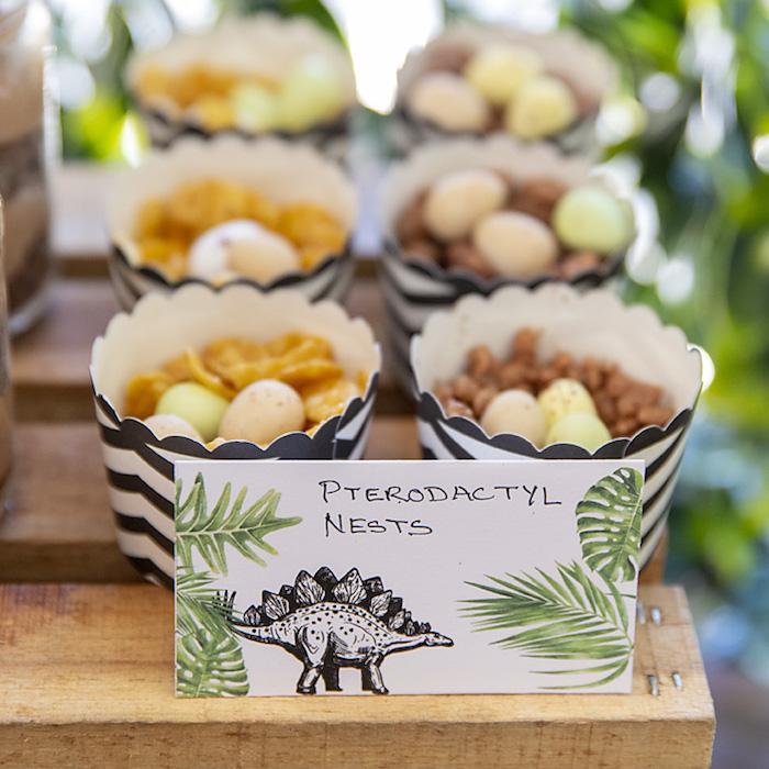 Pterodactyl Nest Dessert Cups from a Glamorous Dinosaur Birthday Party on Kara's Party Ideas | KarasPartyIdeas.com (17)