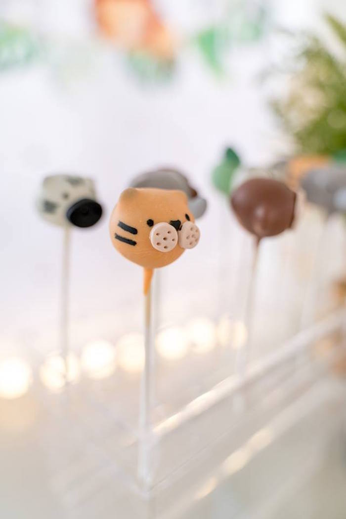 Tiger Cake Pop from a Modern Safari 100 Days Party on Kara's Party Ideas | KarasPartyIdeas.com (27)