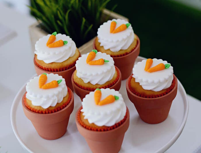 Terra Cotta-potted Carrot Cupcakes from a Peter Rabbit Birthday Party on Kara's Party Ideas | KarasPartyIdeas.com (13)